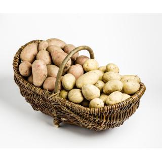 Kartoffeln Marena vfk