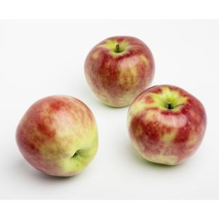 Apfel Lotos