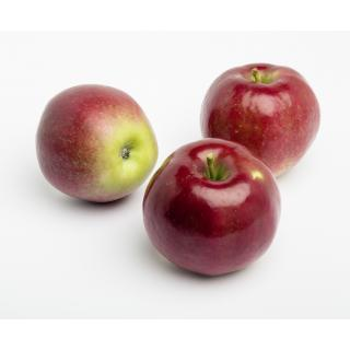 Apfel Delbarestival