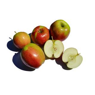 Apfel Collina
